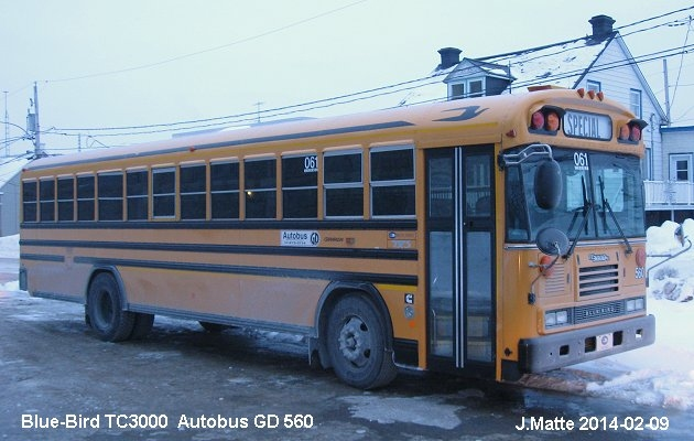 BUS/AUTOBUS: Blue Bird TC3000 2005 GD