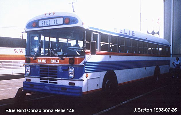 BUS/AUTOBUS: Blue Bird Canadianna 1980 Helie