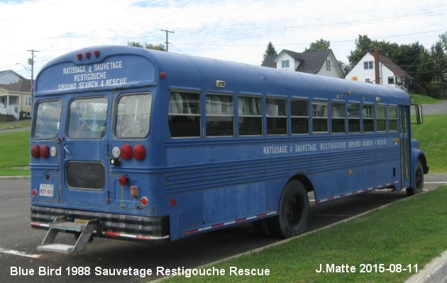 BUS/AUTOBUS: Blue Bird C300 1988 Restigouche