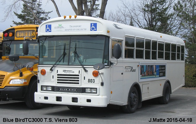 BUS/AUTOBUS: Blue Bird TC3000 2012 Viens